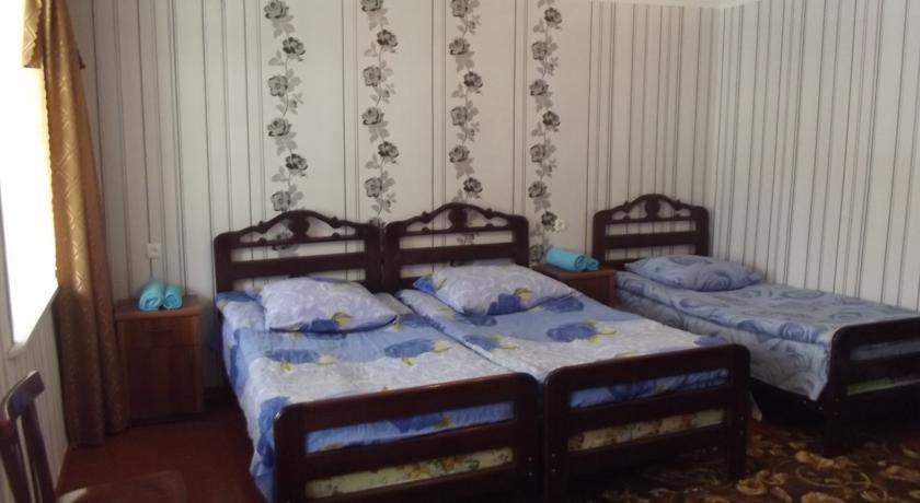 Pogostite.ru - Lia&Ramaz Guest House | Лиа и Рамаз | горнолыжный курорт Гадаури | катание на лыжах | #11