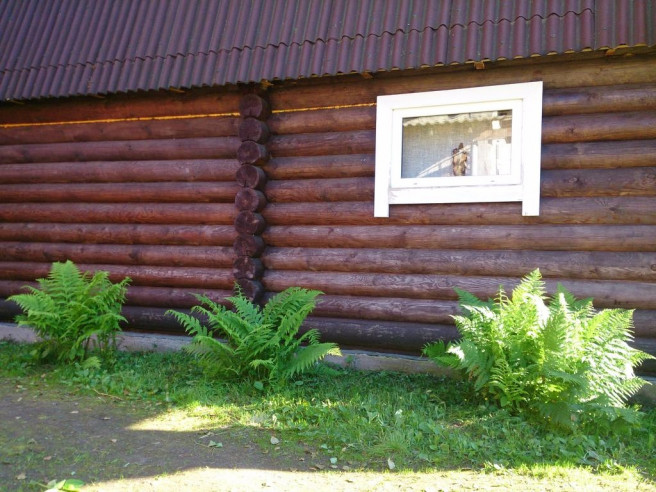 Pogostite.ru - СОСНЫ ГОСТЕВОЙ КОМПЛЕКС | Карелия, Питкяранта | Парковка | Баня #40