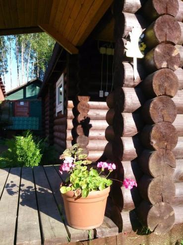 Pogostite.ru - СОСНЫ ГОСТЕВОЙ КОМПЛЕКС | Карелия, Питкяранта | Парковка | Баня #3