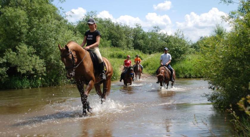 Pogostite.ru - УСАДЬБА КУЗНЕЦОВО ЭКО-ФЕРМА | МО, д. Кузнецово | СПА-процедуры | Прокат верблюда | Верховая езда #32