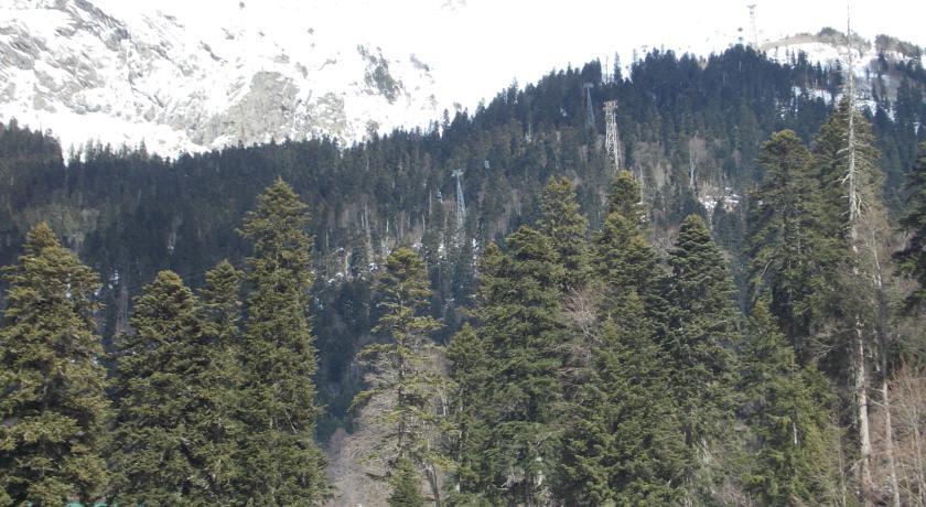 Pogostite.ru - Сокол | Домбай | р. Аманауз | Катание на лыжах | #2