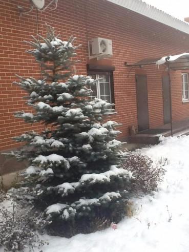 Pogostite.ru - Апартаменты на Курортная 33 | Зеленая Поляна | озеро Банное | Катание на лыжах #4