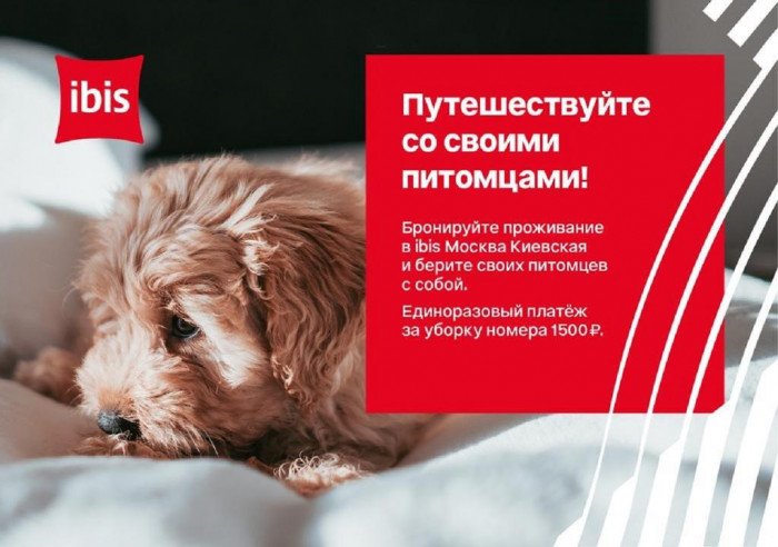 Pogostite.ru - Ибис Москва Киевская - Ibis Moscow Kievskaya #3