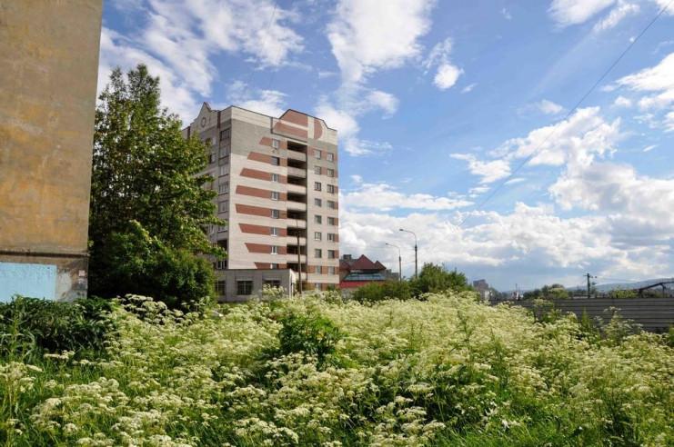 Pogostite.ru - Три зайца | г. Мурманск | Парковка #1