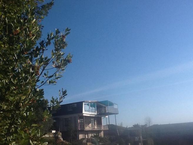Pogostite.ru - ВИЛЛА МИМОЗА | Сухум | 800 м от моря #3