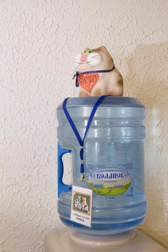 Pogostite.ru - ТРИ КОТА | Великий Новгород | С завтраком | Сауна | Бассейн #6