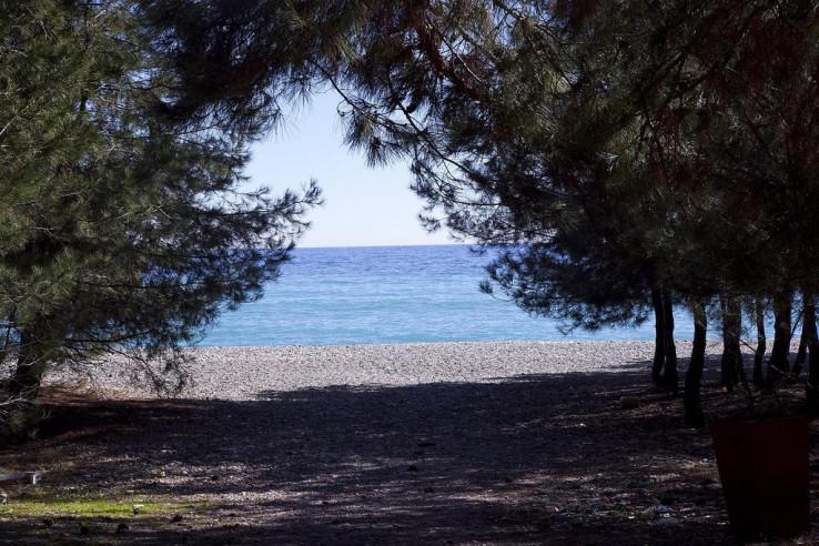 Pogostite.ru - АПСАРА | Пицунда | 100 м от песчаного пляжа #17