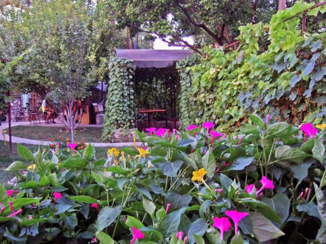Pogostite.ru - Окуневка Инн - Okunevka Inn (1 линия, Включен завтрак и ужин) #25