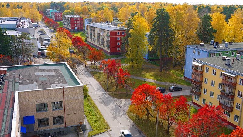 Pogostite.ru - Золотая долина   Новосибирск   Академгородок #44