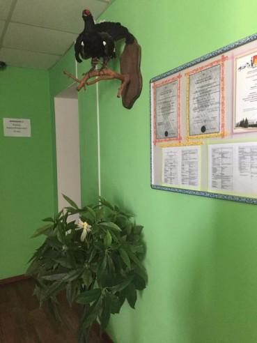 Pogostite.ru - Провинция | Галич | Wi-Fi | С завтраком #4
