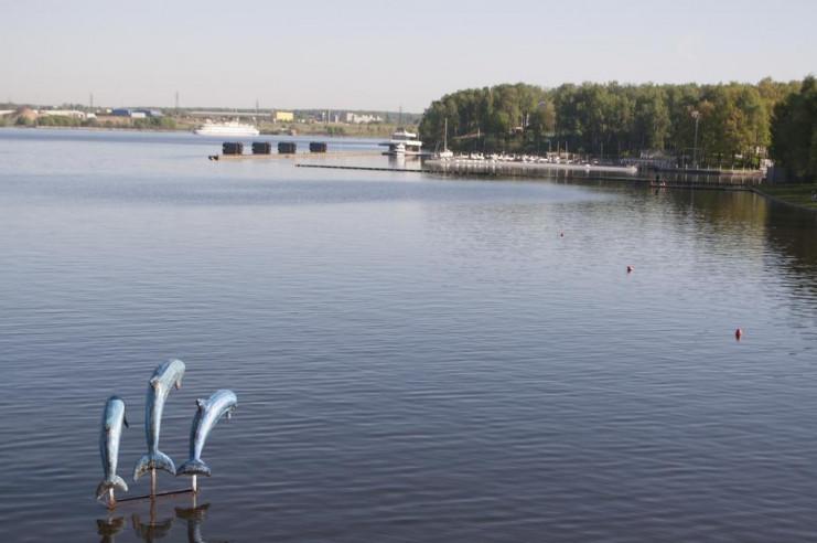 Pogostite.ru - Лакада | Грибки   | Парковка #6