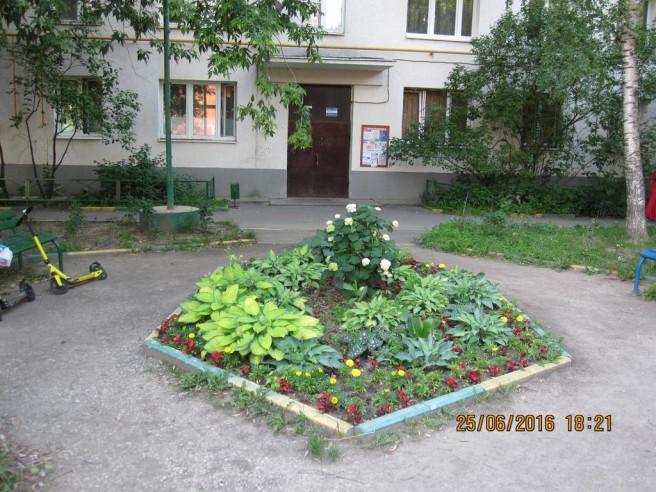 Pogostite.ru -  на Усачева 19 | м. Спортивная | Wi-Fi #1