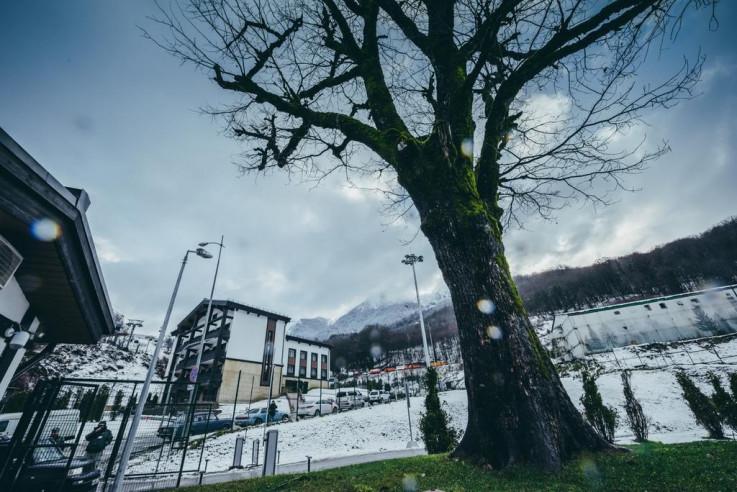 Pogostite.ru - Альпика | Эсто-садок | WI-Fi #1