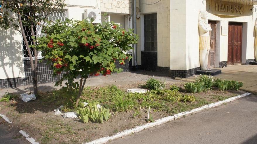 Pogostite.ru - Папирус | Волгодонск | Парковка #2