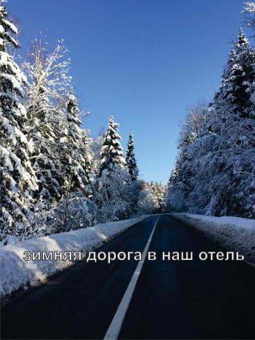 Pogostite.ru - Александрия - Домодедово (трансфер от / до аэропорта) #4