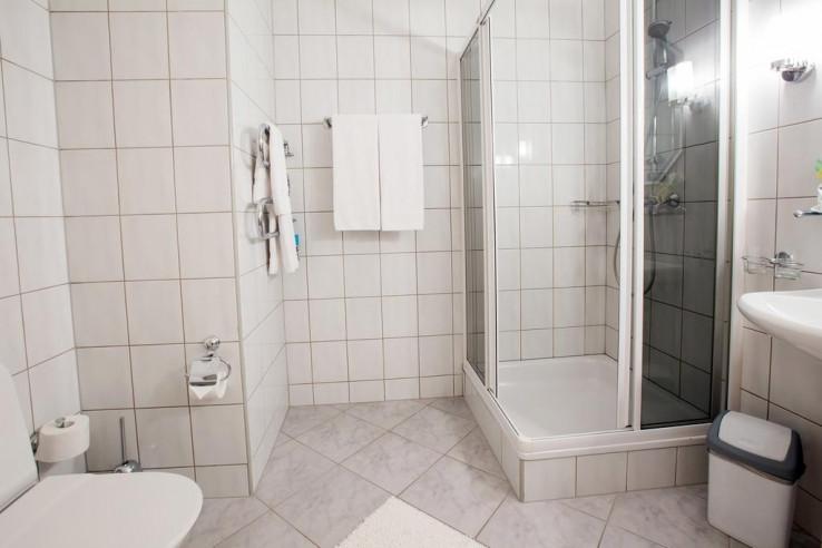 Pogostite.ru - Свисс Хауз | Swiss House #21