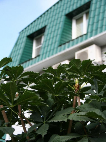 Pogostite.ru - Бутик -отель Тишина | Челябинск #31