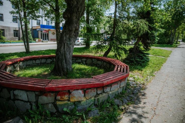 Pogostite.ru - Хвоя (Лыжный Центр) - Бюджетные номера #10