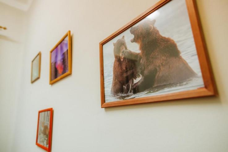 Pogostite.ru - Хвоя (Лыжный Центр) - Бюджетные номера #33