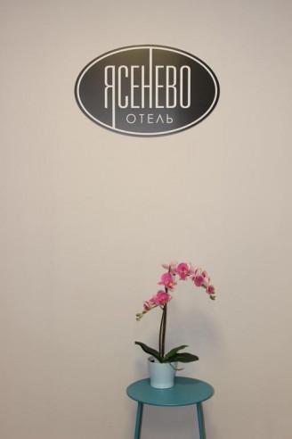 Pogostite.ru - Ясенево - Yasenevo Hotel - Бюджетно #40