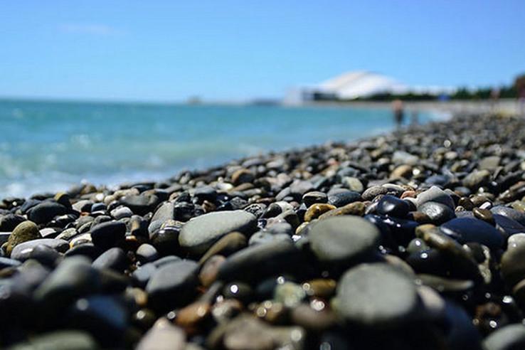 Pogostite.ru - Сигма Сириус Парк - Пляж Имеретинская Бухта (800 м) - Удобное расположение #16