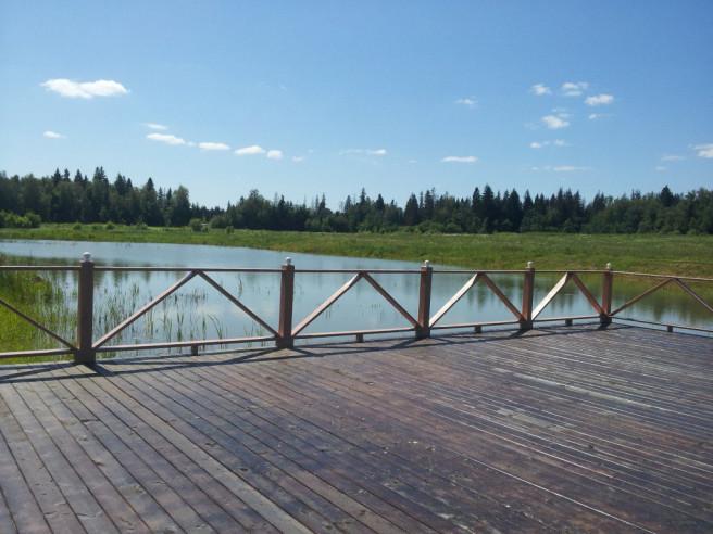 Pogostite.ru - АЛЕКСИНО - ИСТРА КОТТЕДЖИ | Свадебные шатры | Баня | бассейн | трансфер аэропорт / Крокус #42