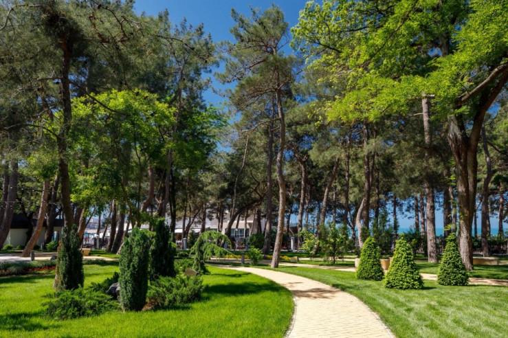 Pogostite.ru - Приморье Grand Resort Hotel #8